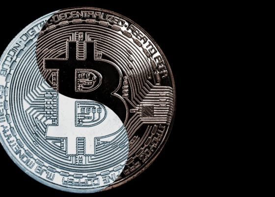 Bitcoin Mainstream and Crypto Naysayers Via Shutterstock