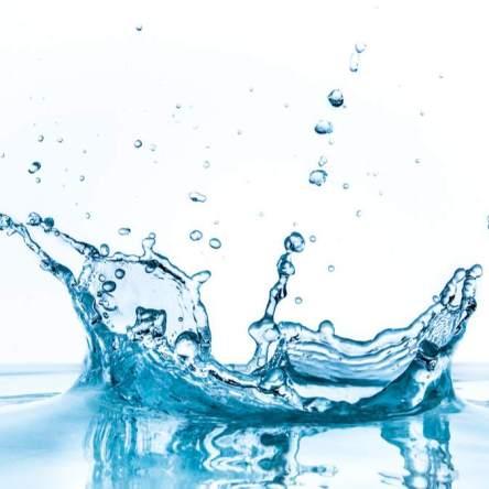 Liquidity Pool - Image via Shutterstock